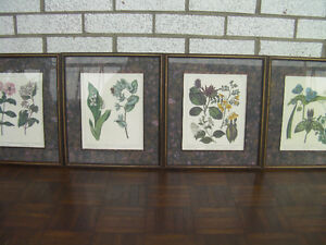 Bombay Company Private Collection - set of 4 framed prints