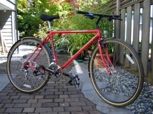 21 speed hybrid bicycle