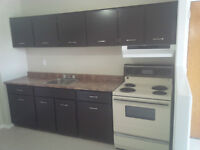 NEWLY RENOVATED, OPEN CONCEPT 2 BEDROOM