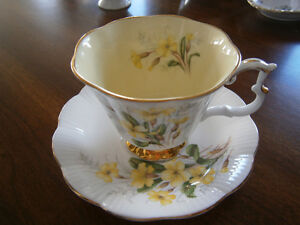 EXCEPTIONAL ROYAL ALBERT FLORAL CUP AND SAUCER SET