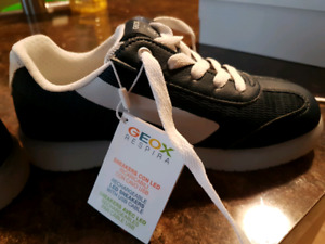 Geox Shoes
