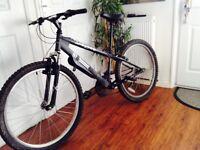 X rated mountain bike