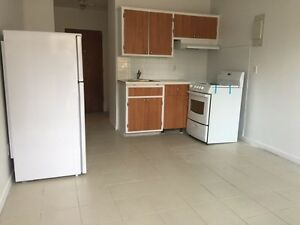 All inclusive 1 1/2 apartment in Rosemont la petite patrie