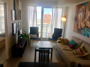 1 Bdr Apt for rent, DT Kitchener  + Parking & Storage , $1275