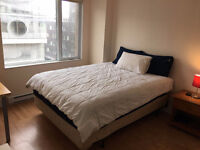 LARGE FURNISHED ROOM IN a 41/2 CONDO in GRIFFINTOWN/OLDPORT