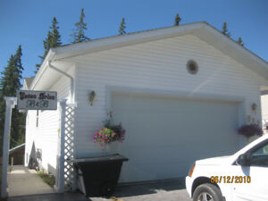 Hinton Furnished 2 Bedroom 2 Bathroom Spacious Lower Level Home