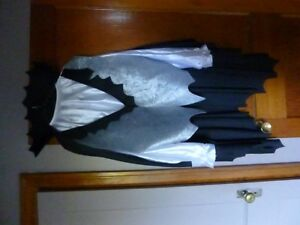 2 ADULT COSTUMES XL