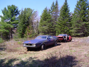 1973 Mustangs for Sale