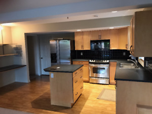 2 Bedroom Basement with separate entrance, Including UTILITIES
