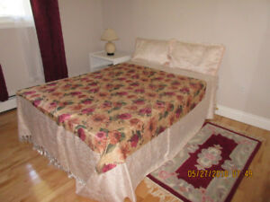 double bed (mattress, box spring and metal  frame)