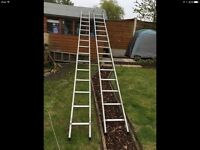 YOUNGMAN DOUBLE SECTION EXTENSION LADDERS