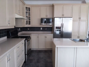 Kitchen for sale (cabinets, corian countertop, sink, appliances)