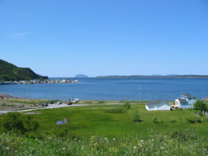 2 Blocks of Land-Frenchman's Cove-Perry Butt-NL Island Realty