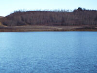 53 ACRES NOT IN SUBDIVISION OVERLOOKING COAL LAKE-LEDUC COUNTY