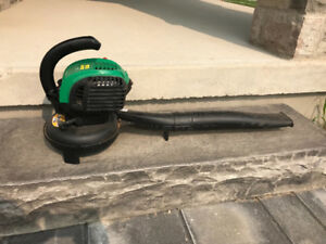 Gas Leaf Blower - Weed Eater FB25