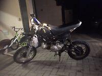 110 hymoto pit bike