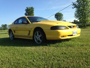 Fast and Beautiful 1995 Mustang GT