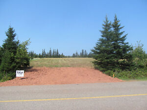 LOOK! Beautiful 1 ACRE LOT FOR SALE