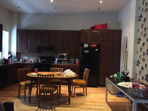 1-2 Bedroom Fully Furnished Apartment on Pins for sublet