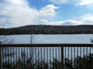 COTTAGE FOR RENT PALMERSTON LAKE