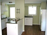 LARGE 2 BEDROOM GREAT LOCATION