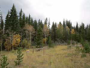1 acre ~ 35 acre lots in Clinton BC (FOR LEASE or FOR SALE)