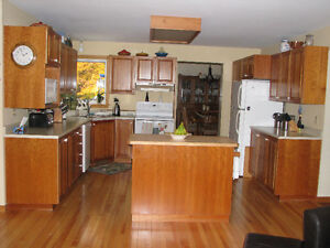 Complete Set of Kitchen Cabinets and Appliances
