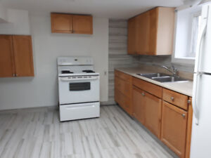 Lower level apartment available