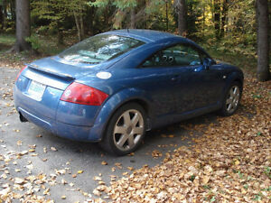 2001 Audi TT Quattro Coupe (2 door) Kawartha Lakes Peterborough Area image 2