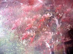 "Original, Vintage Oil Painting by M. Jordan ""Forest Path"" 1970's Stratford Kitchener Area image 7"