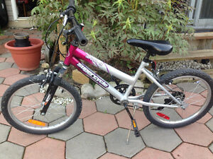 Excellent summer bike for 8-year old