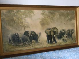 David Shepherd Elephants at Amboseli 1968 print
