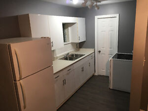 Renovated Apartment for rent in belwood Kitchener / Waterloo Kitchener Area image 4