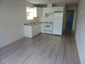 2 bedroom, 1 bathroom basement suite for rent available April 1
