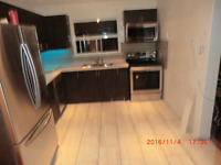 Appliance/Plumb/Elec,install in Bluffs,Beaches,Scarb