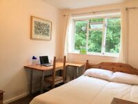 *Lovely Double Room 1min. walk to Canonbury Overground*