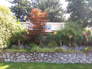 For rent....Serene rural home with Japanese garden.