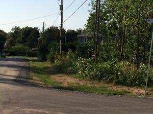 Terrain 1105.7M2 West Island Greater Montréal image 3