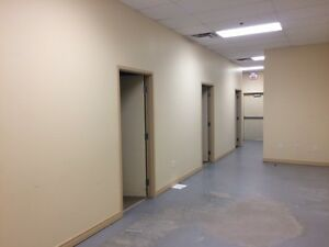 Perfect for Medical or Office or food ESSEX 1400sqft Turn Key Windsor Region Ontario image 5