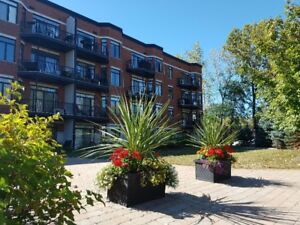Condo 3 1/2 à louer (for rent) Longueuil - Parc Michel Chartrand