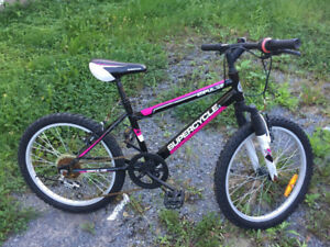 Girls Bicycle  for ages 8-10, asking $30