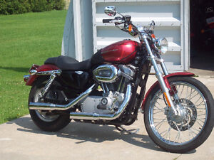 Harley Davidson 883 c Sportster xl. For sale or trade Low k