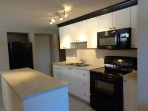 Newly renovated, Legal 2 Bed Basement Suite, St. Albert