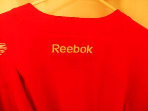 Detroit Red Wings Jersey - 2016 Special Stadium Series Jersey Windsor Region Ontario image 3