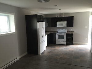 Bright beautiful Apartment available Dec 1st