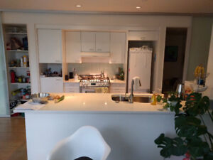 Used white kitchen cabinets, appliances, and silestone counter
