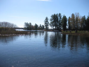 COTTAGE - STONEY LAKE - 3 WEEKS AVAILABLE FOR SUMMER 2018.