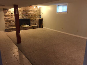 Large 1 Bedroom Basement Apartment in Desired East Hill Location