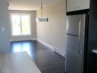 NEW CONSTRUCTION -  Stylish 2 bdrm Duplex - Pet Friendly!!
