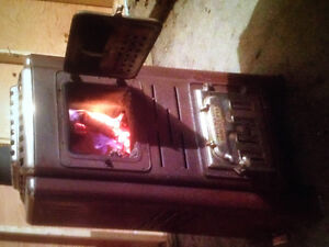 Wood/coal stove